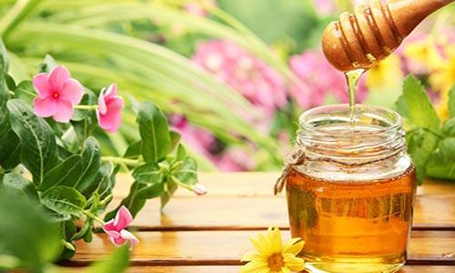 Mật ong là cách giúp trẻ sơ sinh bị khô da mặt hiệu quả