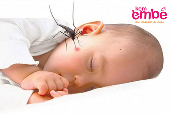 Côn trùng cắn sốt khá nguy hiểm