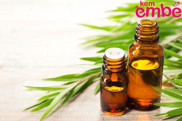 Tinh dầu chàm trị vết côn trùng cắn sưng to