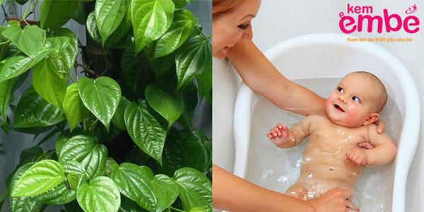 chữa viêm da cho trẻ em bằng tắm lá trầu không