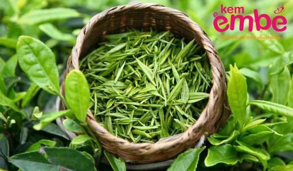 Dùng lá trà xanh để chưa hăm da vùng cổ cho trẻ